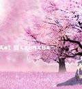 AnimeOnline113